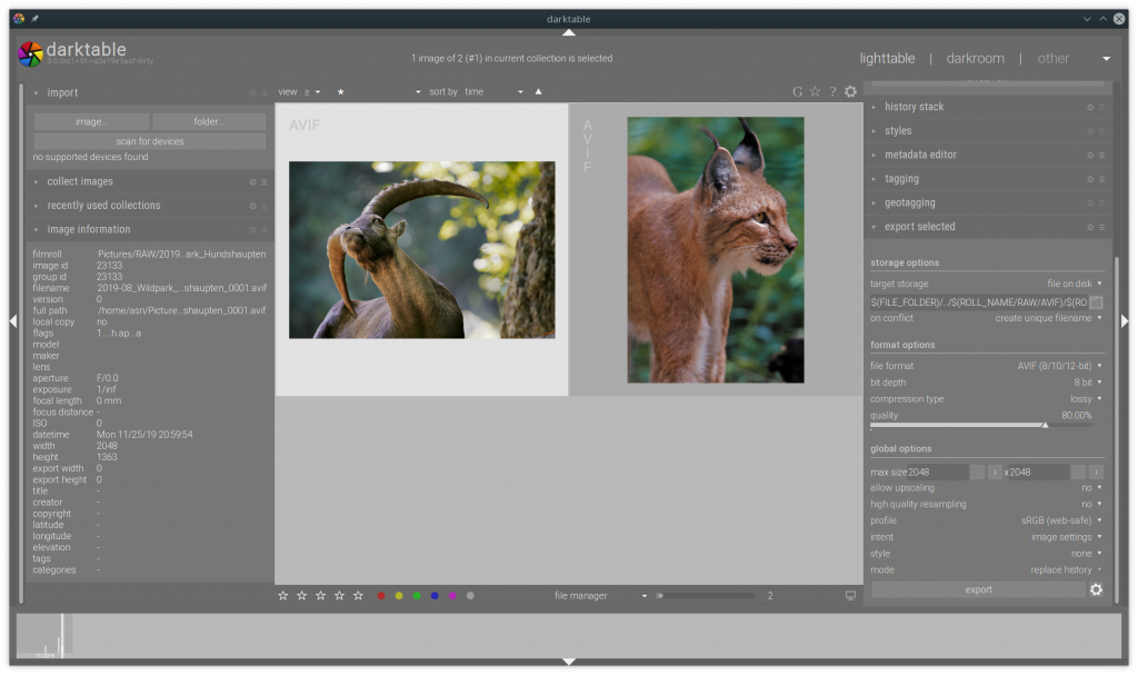 AVIF support in darktable